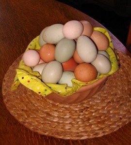 fresh eggs at Mendocino Farmhouse